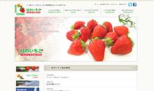 有限会社杜のいちご様ウェブサイト